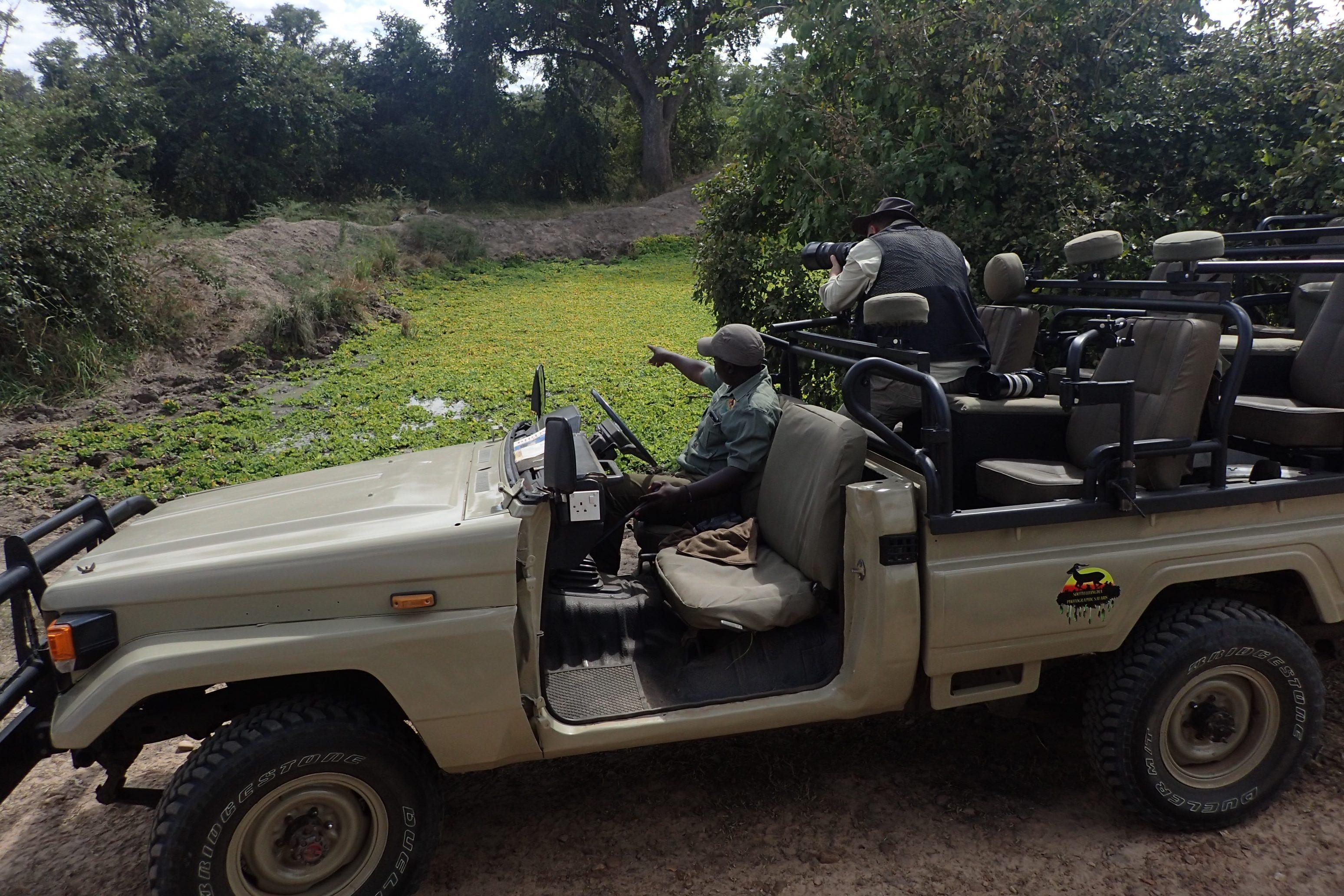 photography safari southern africa